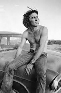 Theme song by Dennis Wilson